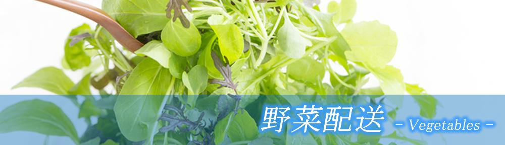 大栄社 野菜配送